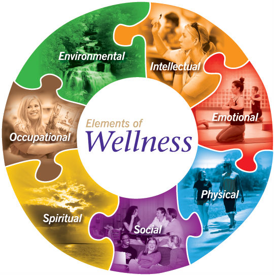 Wellness WheelPNG