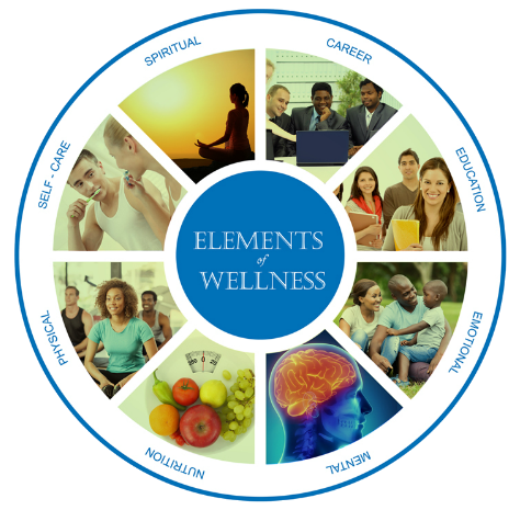 Elements of Wellness 700